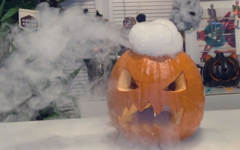 Image to for Grow your own pumpkin from a test tube in time for Halloween!