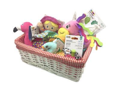Lamaze Girls Gift Basket