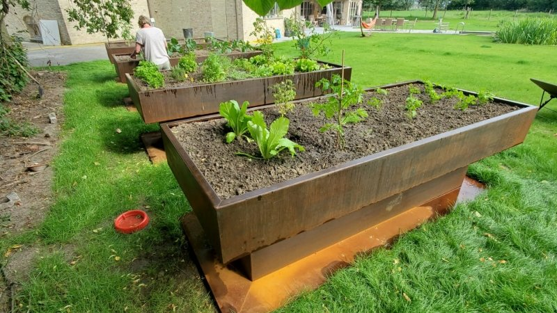 Garden projects 56