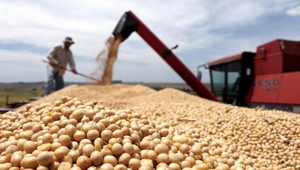 Tras 20 años de negociaciones, la Argentina exportará harina de soja a China