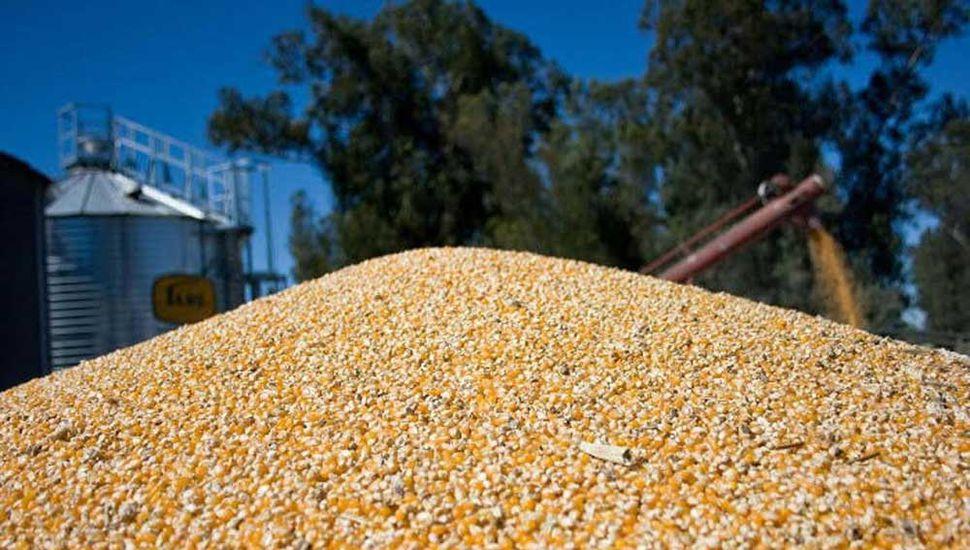 Durante el primer cuatrimestre de 2019 crecieron las exportaciones agroindustriales.