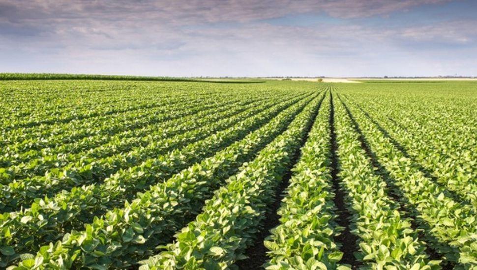 Realizan jornada sobre aplicación de agroquímicos en Alem