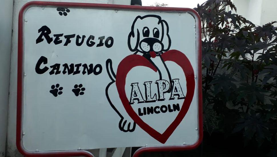 Refugio Canino ALPA, una historia de trabajo y protección animal