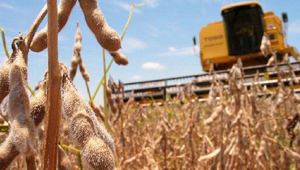 Nueva baja en la estimación de la cosecha de soja 2017/18