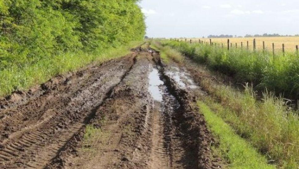 Más del 70 % de los caminos rurales de la Provincia está en mal estado