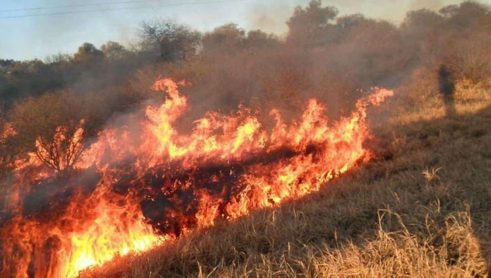 Combaten los 15 focos de incendios en Mendoza