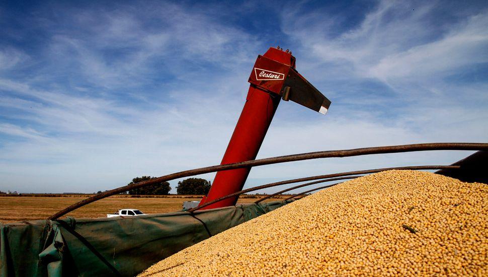 El campo, satisfecho con los rindes y con buenas expectativas para la siembra de trigo.