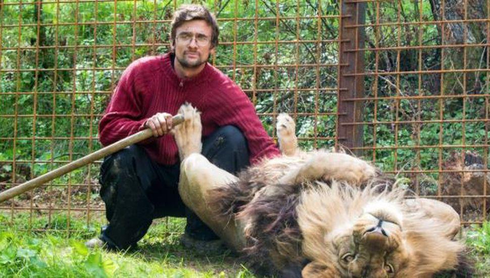 Un hombre murió devorado por un león que cuidaba en el patio de su casa