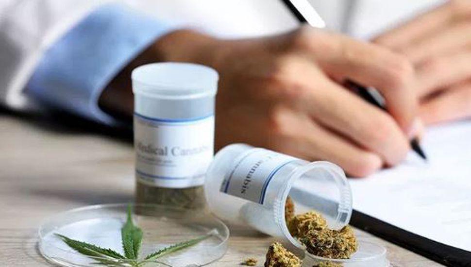 Primera en el país: la UNS dictará Cannabis Medicinal como materia