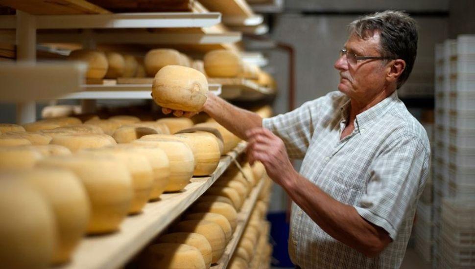 """La fábrica de quesos """"Los Holandeses"""" se prepara para recibir a los visitantes"""