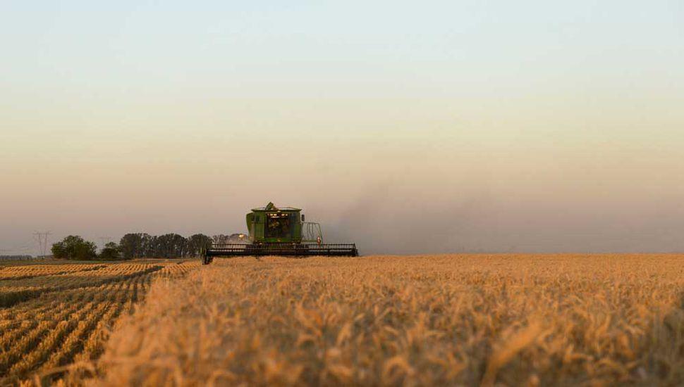 Retenciones al agro: respaldos y descontento