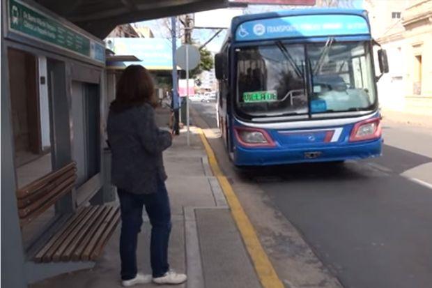 Muchos juninenses optan por el servicio de transporte público.