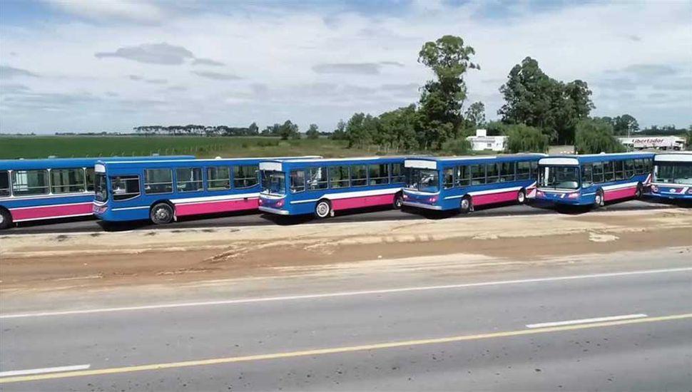 Las doce unidades comenzarán la semana próxima una serie de pruebas en la ciudad.