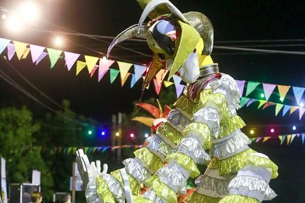 Carnaval en Roberts y Bayauca