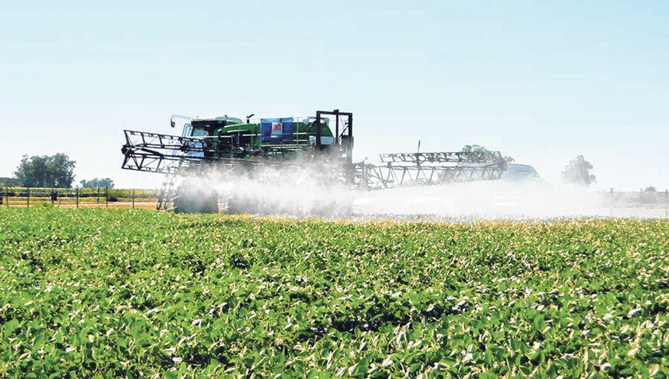 Pese a que está prohibido, es constante el uso de agroquímicos cerca de centros urbanos.