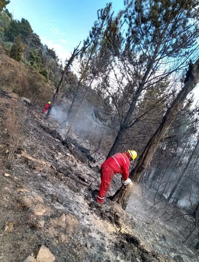 Bomberos de nuestra ciudad combaten fuegos en las sierras.