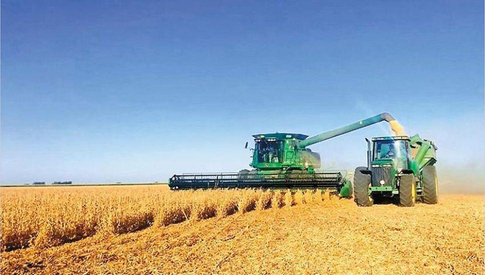 Desplazan a la Argentina del ranking de los exportadores agrícolas