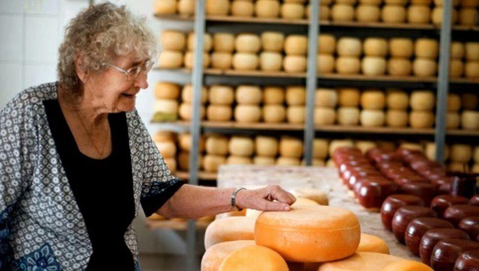 Los Toldos vende más de un millón de kilos de queso gouda por año