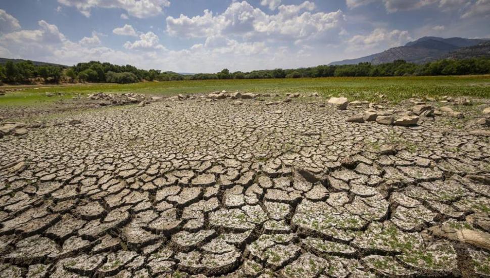 """Miles de científicos de todo el mundo declaran una """"emergencia climática"""""""
