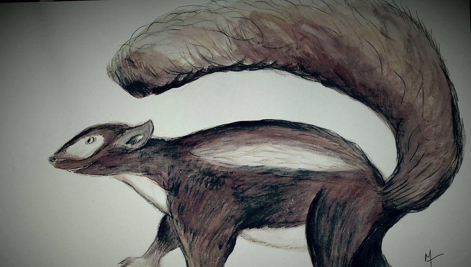 Constituye el primer hallazgo de un fósil de este animal en nuestras tierras.