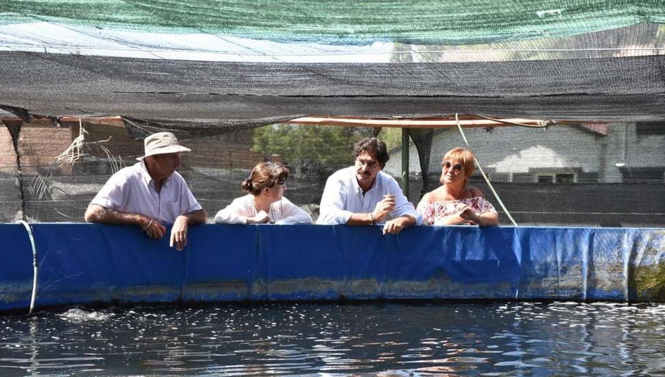 Nuevo repoblamiento de larvas de pejerrey en lagunas bonaerenses