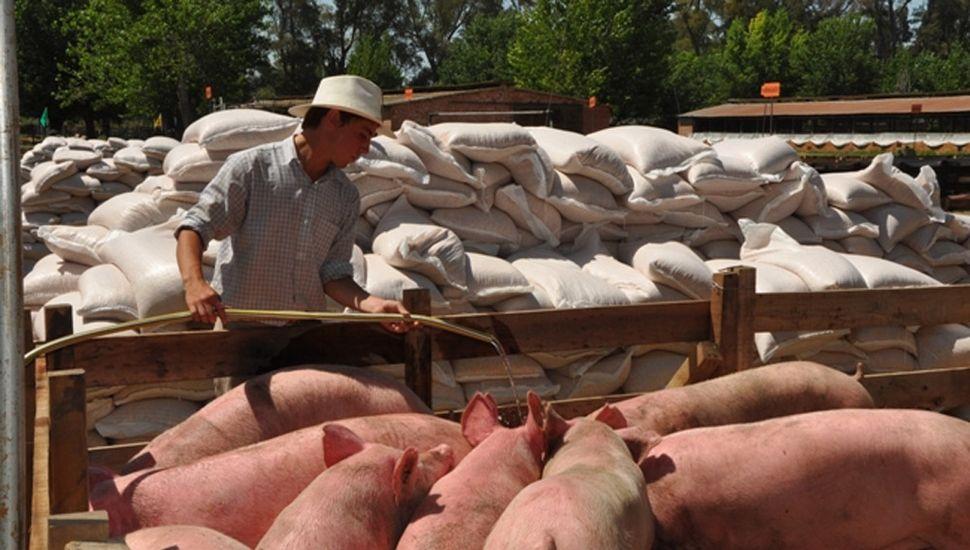 La Provincia ofrece créditos más accesibles al agro.