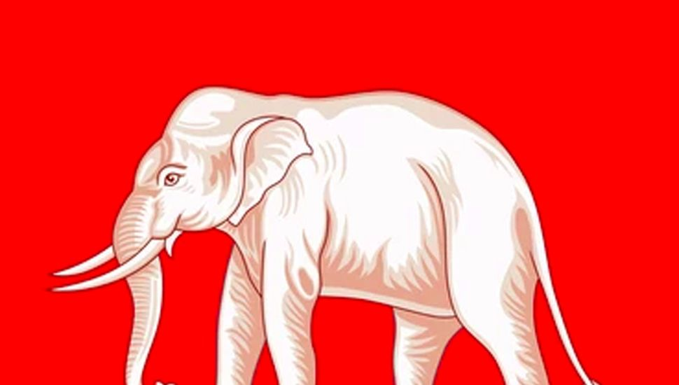 Elefante blanco