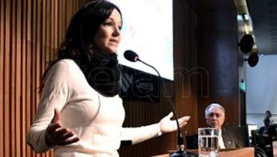 Diputados citó a la ministra Stanley  por la suspensión de pensiones