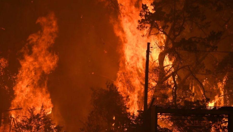 Incendios en Australia: 28 muertos  y 10 millones de hectáreas quemadas