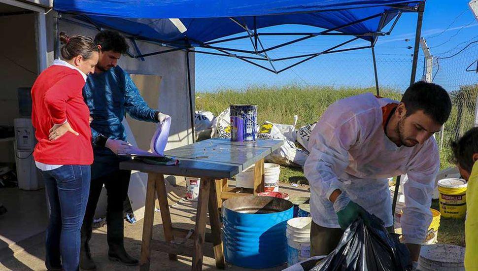 Miembros de una consultora privada realizan en Junín un análisis de los residuos.