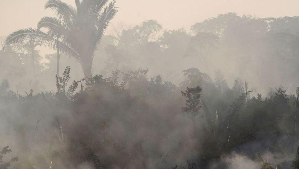 """""""Es probable"""" que esta noche llegue a Junín el humo del incendio en el Amazonas"""