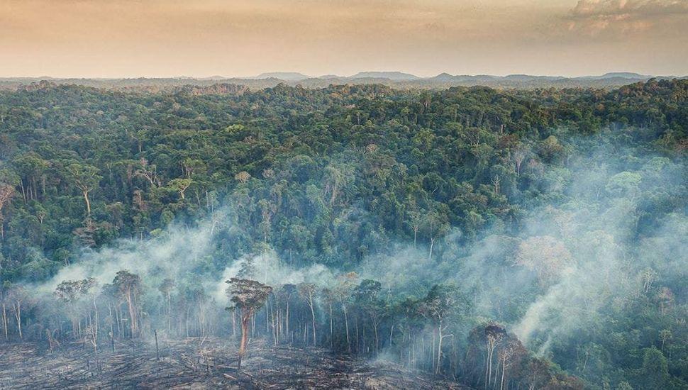 Llegó a la Argentina el humo por el fuego en la selva brasileña