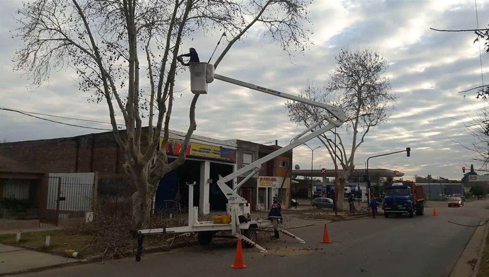 Buscan despeje de cableados y mejorar la seguridad.