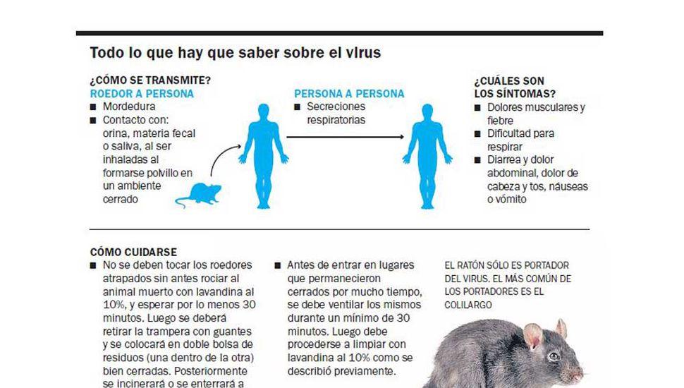 Hantavirus: ya suman nueve los muertos en Chubut
