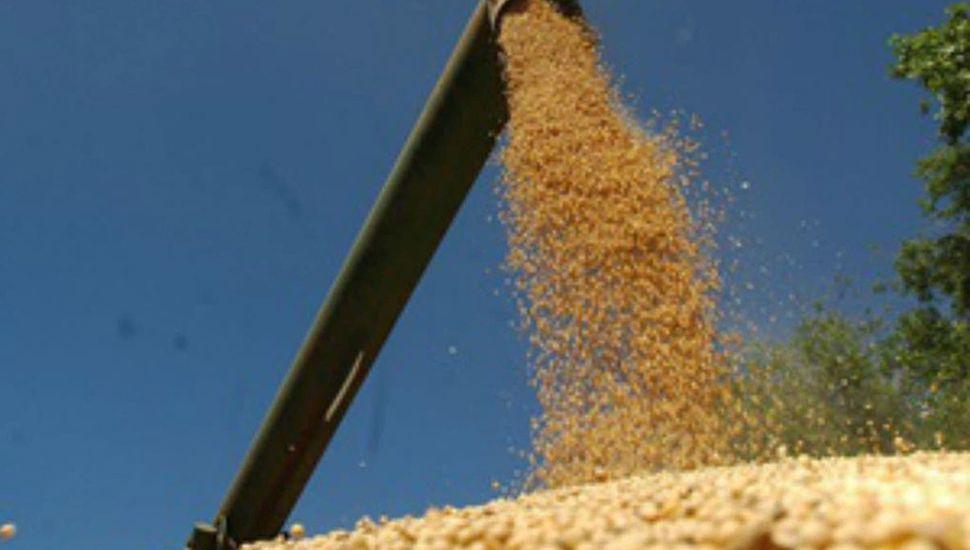 Aumentaron los precios de la soja y bajaron los del maíz y el trigo