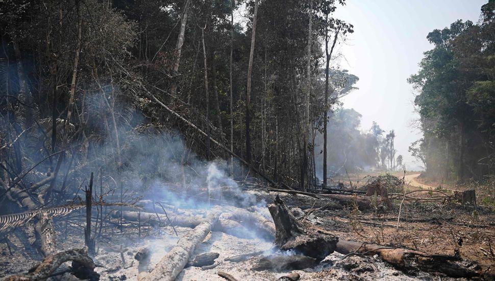 Las llamas avanzan y arrasan no solo con la flora y fauna, sino también con comunidades nativas del Amazonas.