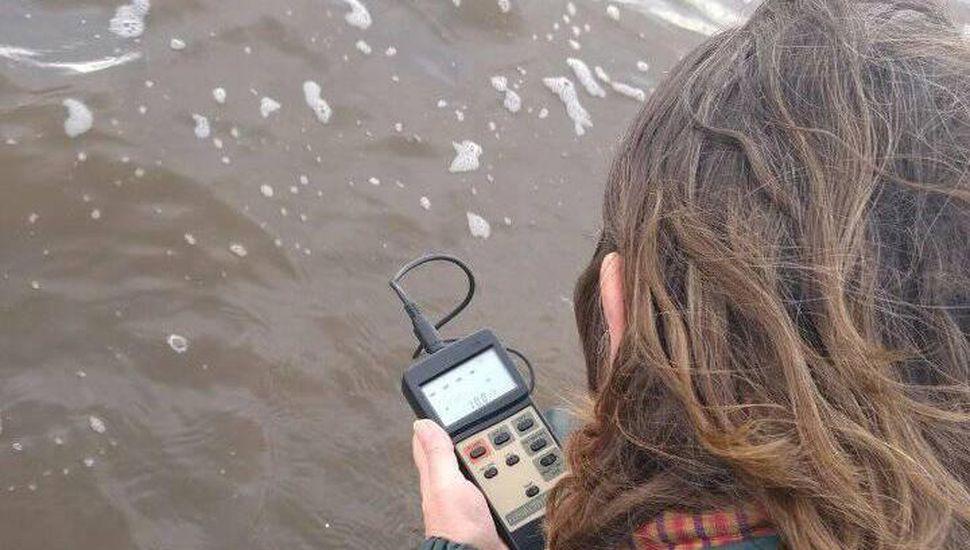 Científicos estudian criar pejerreyes en jaula en la laguna de Bragado