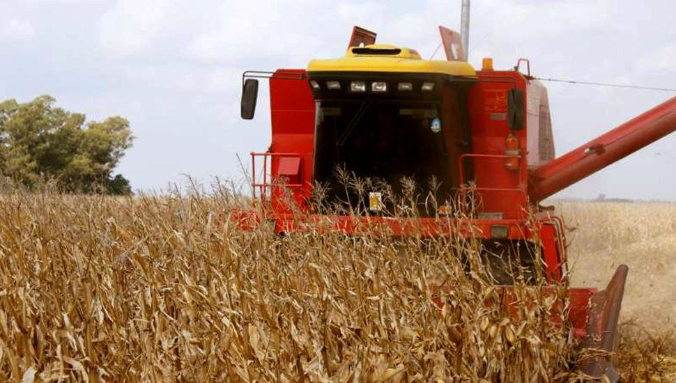 La carga impositiva se incrementa hasta el 64,5% en el cultivo de soja.