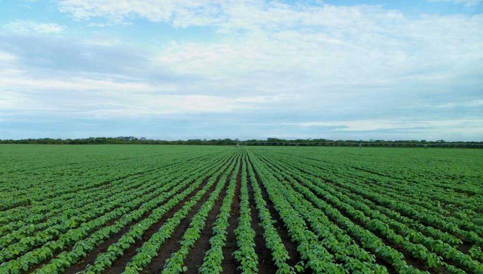 Bronca y descontento del agro tras   el nuevo esquema de retenciones