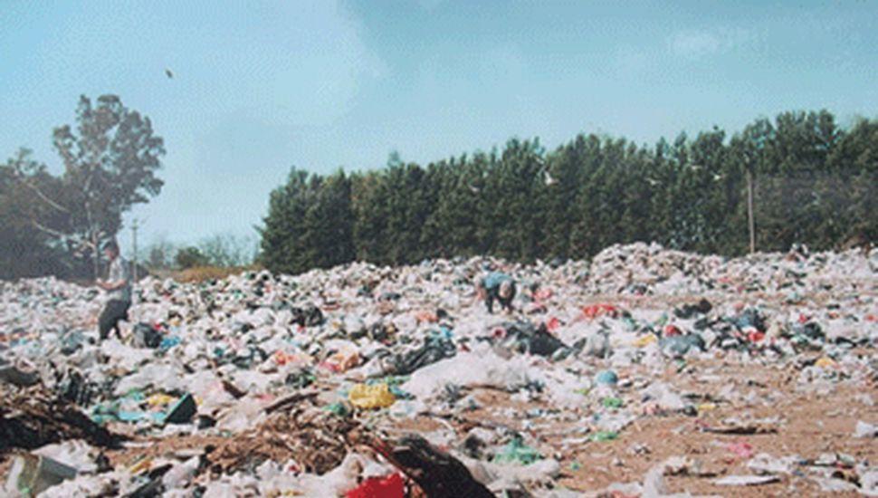Desde el Municipio buscan recuperar  materiales reciclables de la basura urbana