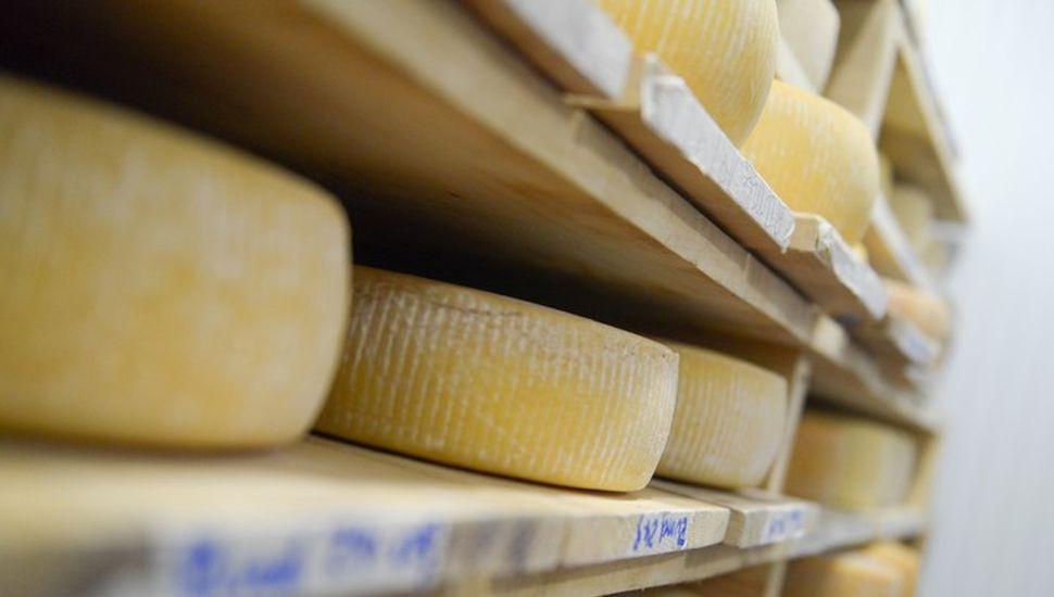 Agricultura fija condiciones para otorgar cupo de exportación de quesos a Estados Unidos