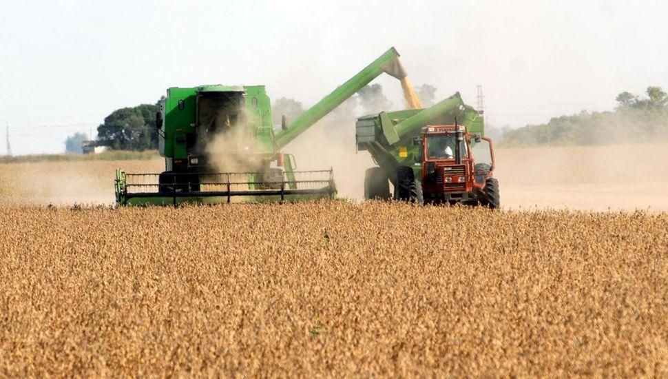 El clima acompaña para levantar una cosecha que sufre caída de rendimientos.