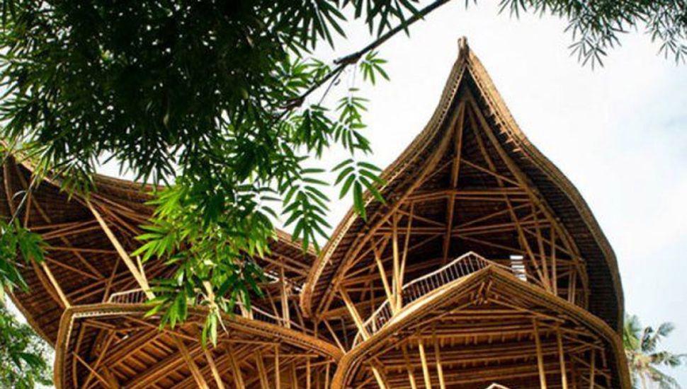 El bambú puede reemplazar materiales pesados e importados.