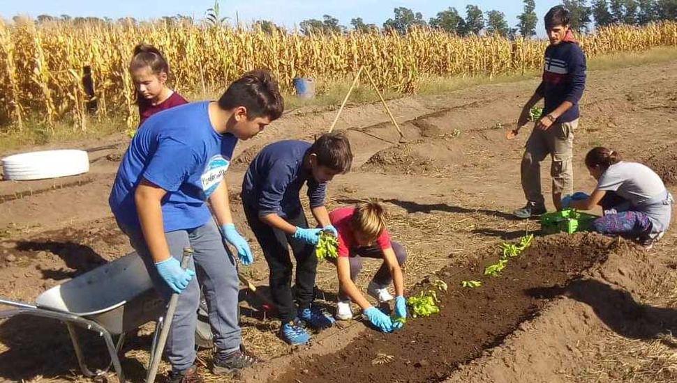 Adolescentes colocando plantines en la huerta agroecológica comunitaria granadense.