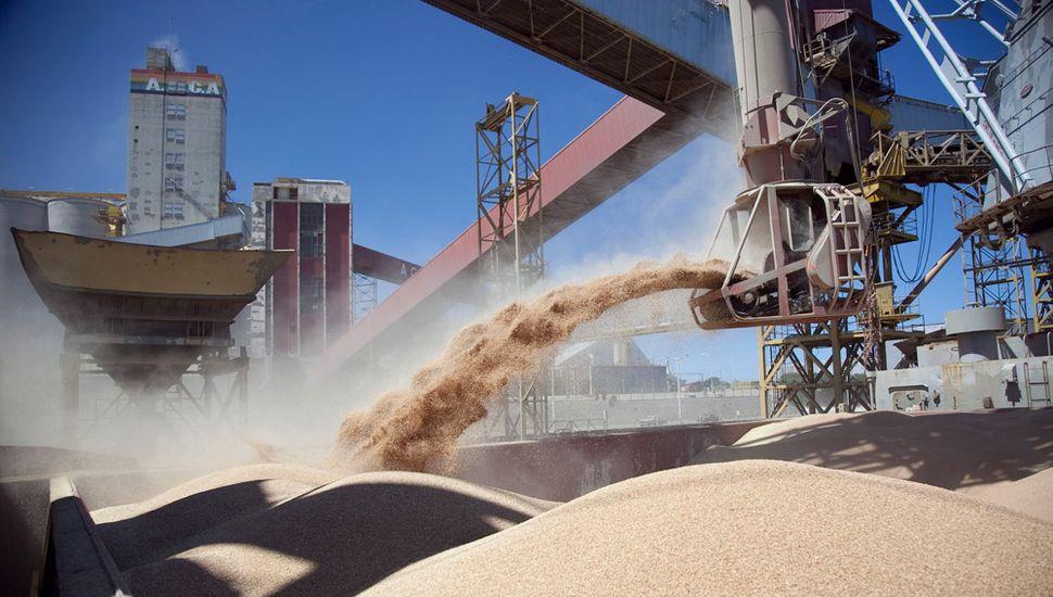 Argentina se prepara para exportar harina de soja a China