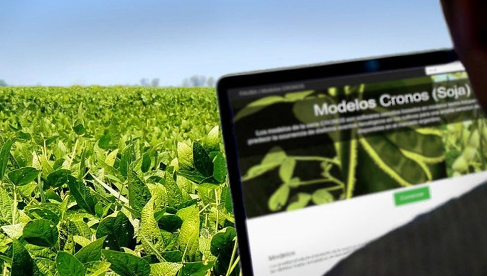 El programa permite optimizar rindes de la soja.