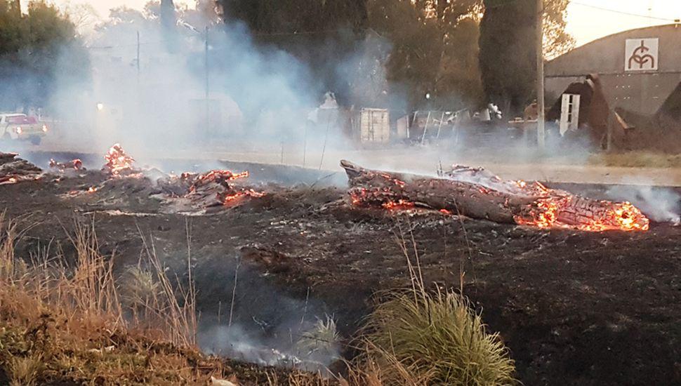 pastizales incendio junin