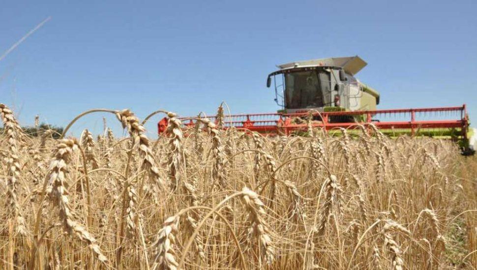 La agricultura tiene potencial para  mitigar los gases de efecto invernadero