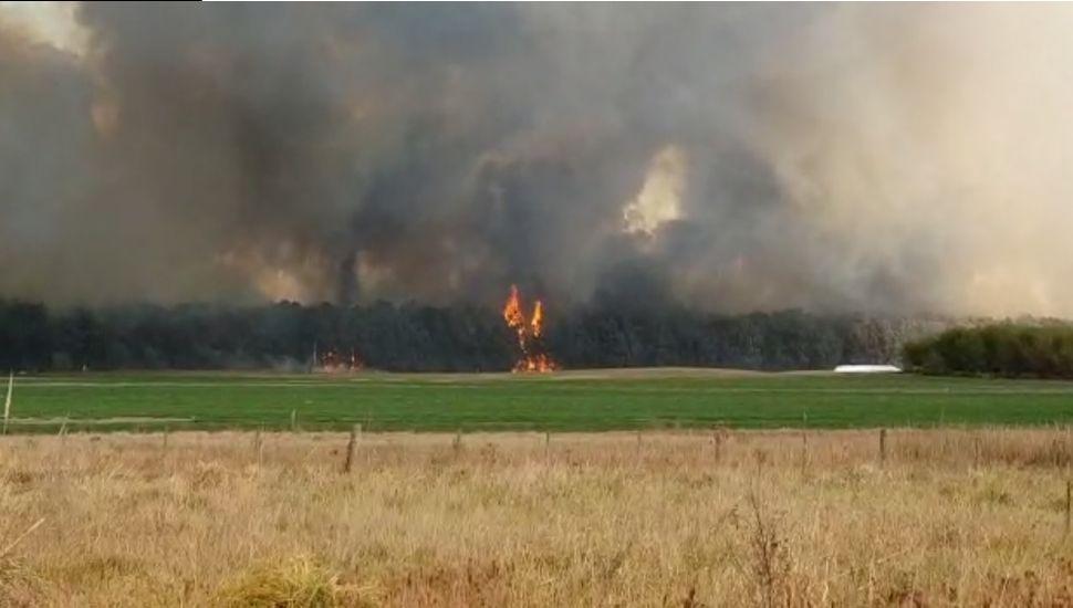 Un monte de unas 50 hectáreas se incendia en Morse