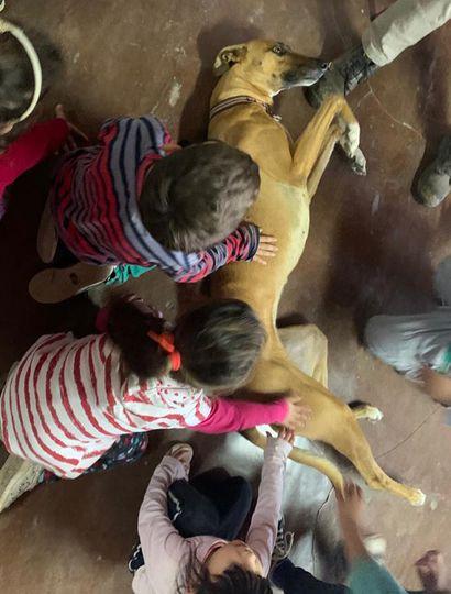 Los chicos estuvieron con uno de los animales de los veterinarios.